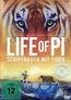 Life of Pi - Schiffbruch mit Tiger (DVD), gebraucht kaufen