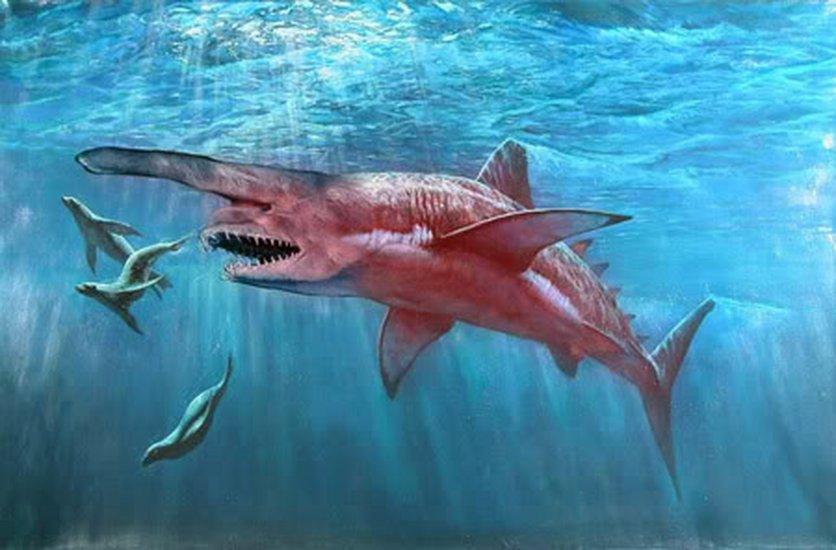 shark attack sie lauern in der tiefe stream