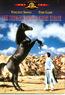 Der schwarze Hengst kehrt zurück (DVD) kaufen