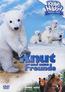 Knut und seine Freunde (DVD) kaufen