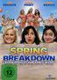 Spring Breakdown (DVD) kaufen