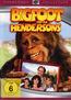 Bigfoot und die Hendersons (DVD) kaufen