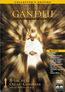 Gandhi (DVD) kaufen