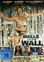 Balls to the Wall (DVD) kaufen