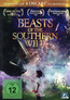 Beasts of the Southern Wild (DVD) kaufen