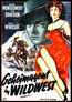 Geheimagent in Wildwest (DVD) kaufen