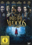 Into the Woods (DVD) als DVD ausleihen