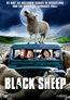 Black Sheep - FSK-18-Fassung (DVD) kaufen