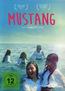Mustang (DVD) kaufen