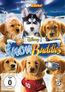 Snow Buddies (DVD) kaufen