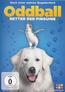 Oddball (DVD) kaufen