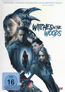 Witches in the Woods (DVD) kaufen