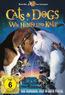 Cats & Dogs (DVD) kaufen