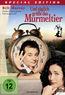 Und täglich grüßt das Murmeltier (DVD) kaufen