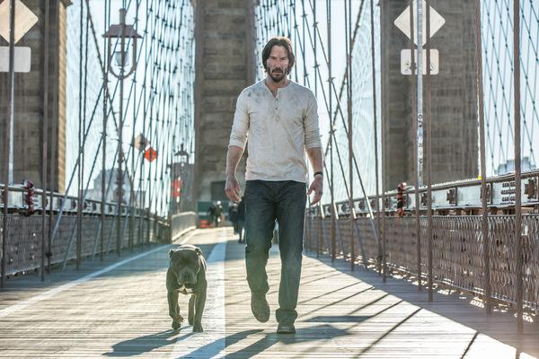 Keanu Reeves ist 'John Wick'