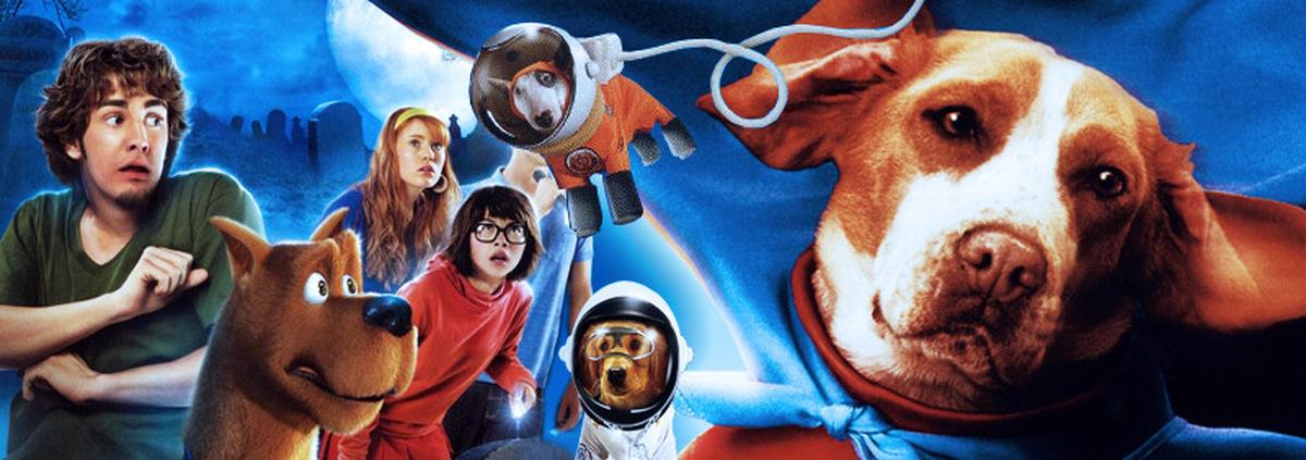 Filme rund um den Hund: Wau! Hollywuff-DVDs mit Lassie, Rex & Marmaduke