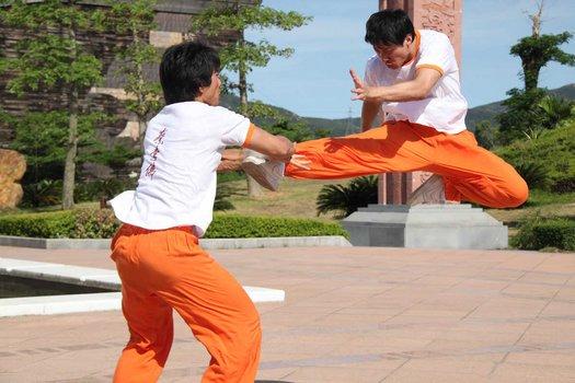 Choy Lee Fut