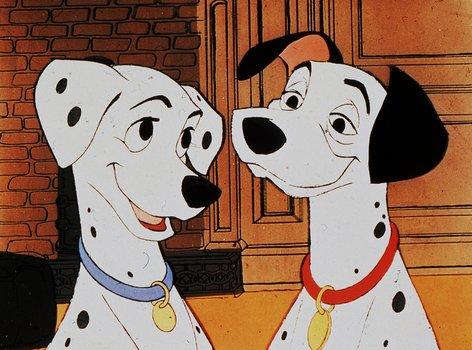 Girl Dog Name In  Dalmatians