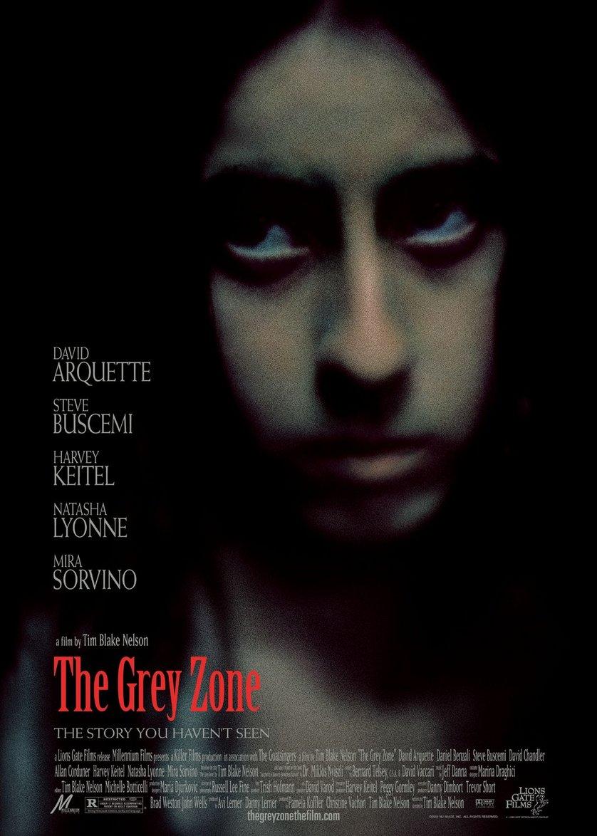 Greyzone Kritik