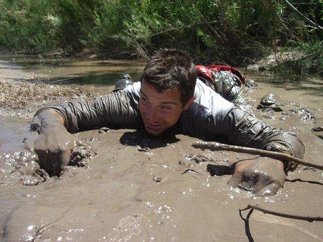 Abenteuer Survival Stream