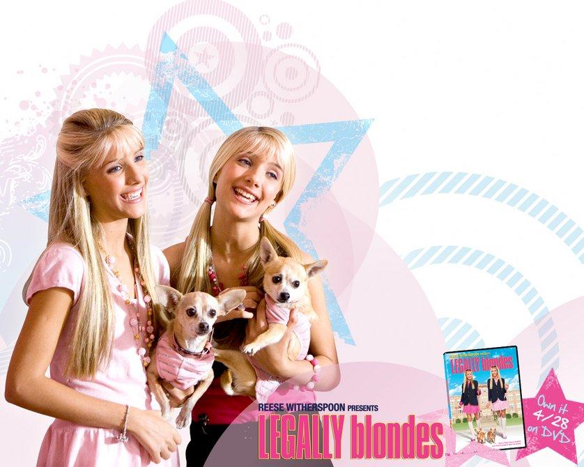 Natürlich Blond 3 Stream