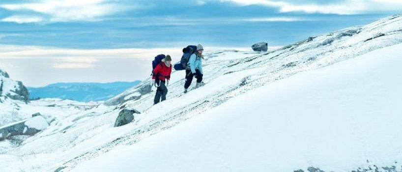 Fjellet - Der Berg
