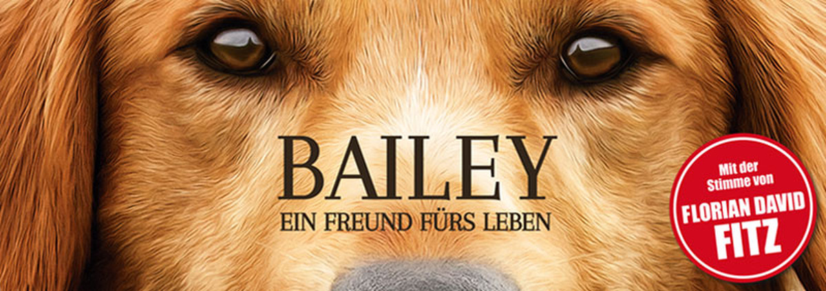 Bailey - Ein Freund fürs Leben: Hund Bailey fragt nach dem Sinn des Lebens