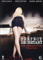 Secretary 2 - Perfect Secretary