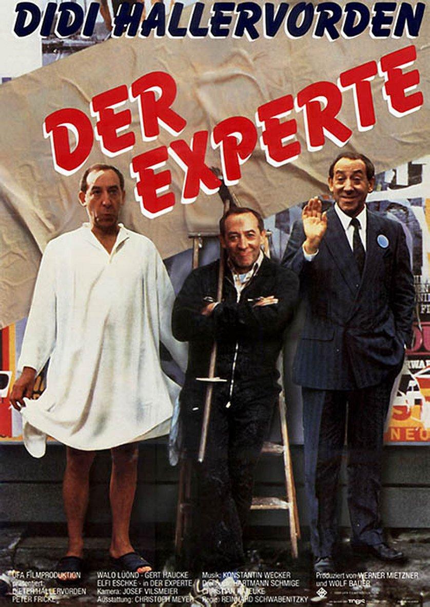 Didi – Der Experte