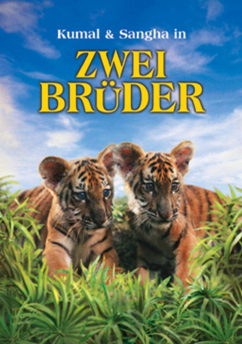 Zwei Brüder Film