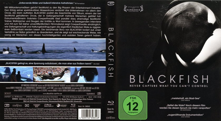 blackfish essay fd 'blackfish': what the hell is sea world thinking comments tilikum is a whale, some 12,000 pounds in weight, who since 1991 has been implicated in the deaths of.