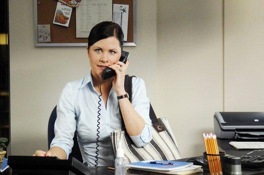 The perfect secretary 3