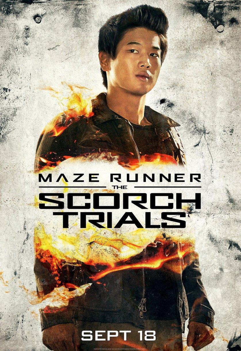 Maze Runner 2 - Die Auserwählten in der Brandwüste: DVD