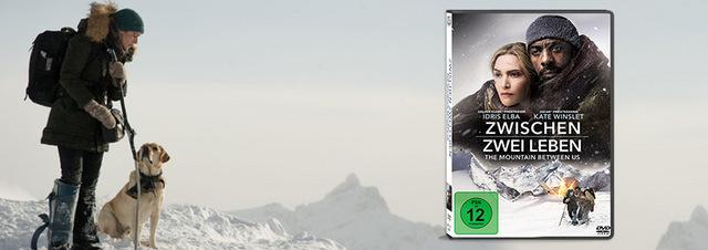 Zwischen zwei Leben: Idris Elba und Kate Winslet gefangen im Eis!