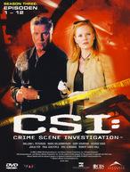 CSI: Las Vegas - Staffel 3