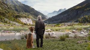 'Ruf der Wildnis' © 20th Century Fox (USA 2020)
