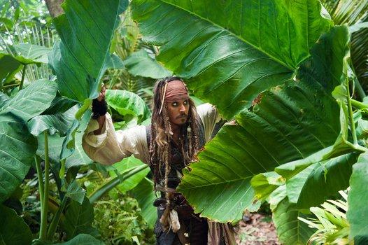 Fluch der Karibik 4