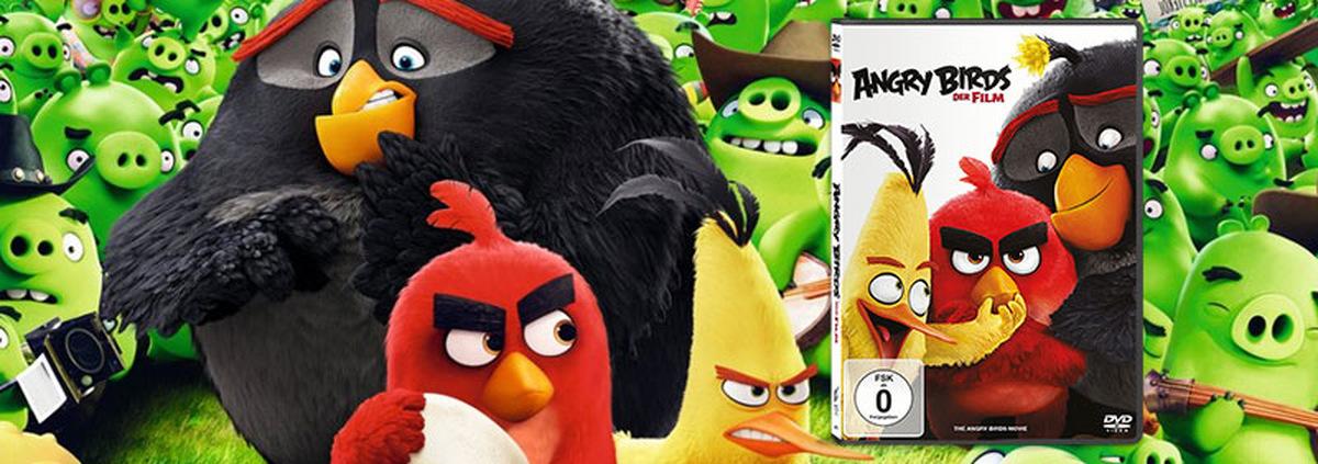 Angry Birds - Der Film: Red, Chuck & Co. besuchen Sie im Heimkino