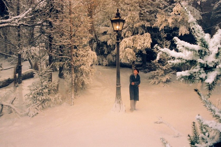 Die Chroniken von Narnia 1 Der König von Narnia DVD
