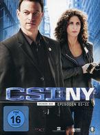 CSI: New York - Staffel 6