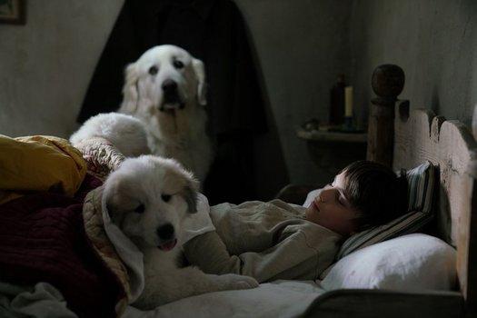 Belle & Sebastian 3 - Freunde fürs Leben