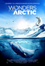 IMAX - Wonders of the Arctic
