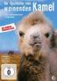 Die Geschichte vom weinenden Kamel
