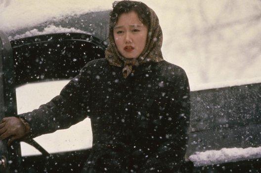 Schnee, der auf Zedern fällt