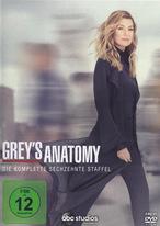 Grey's Anatomy - Staffel 16