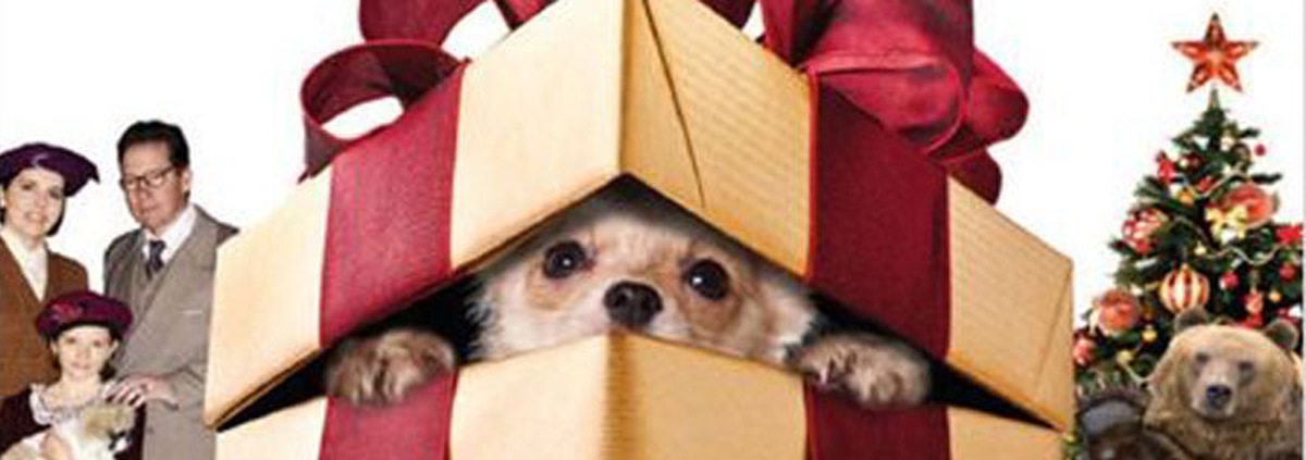 Nikolaus-Aktion: So bringt der Nikolaus Geschenke auch in euer Haus!