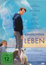The Book of Love - Rendezvous mit dem Leben
