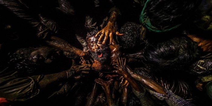 Jallikattu - Zorn der Bestien