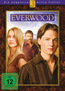 Everwood - Staffel 3