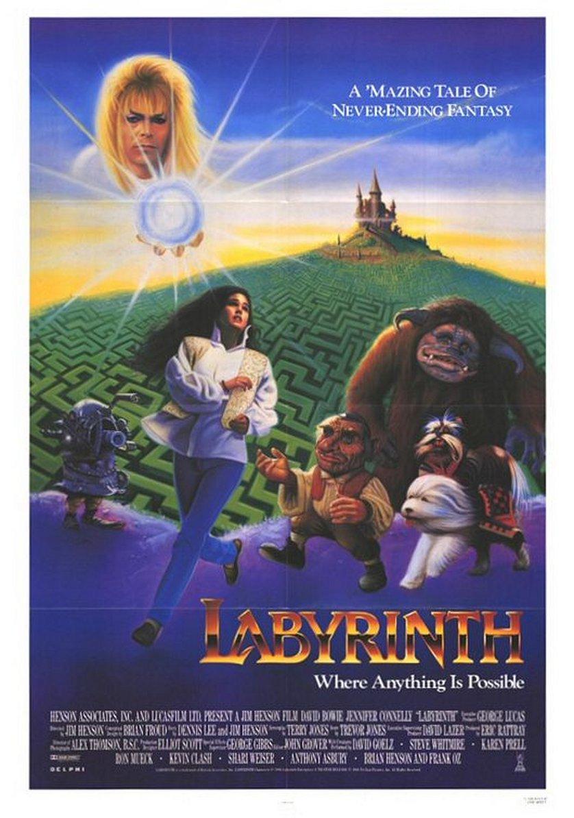 Die Reise Ins Labyrinth Dvd Oder Blu Ray Leihen Videobusterde